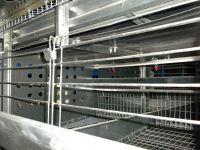 Клеточное оборудование для кур-несушек: фото 2