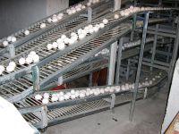 Транспортеры яйцесбора - фото 3