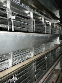 Клеточное оборудование для кур-несушек: фото 3